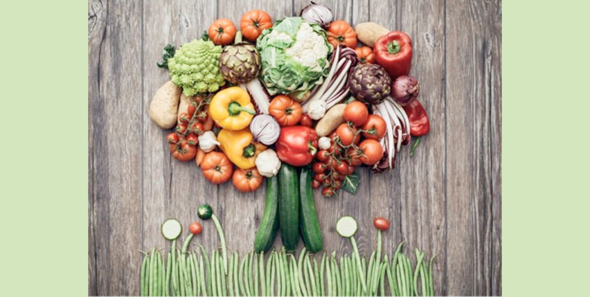 B-Optimal-Plant-Based-Diet