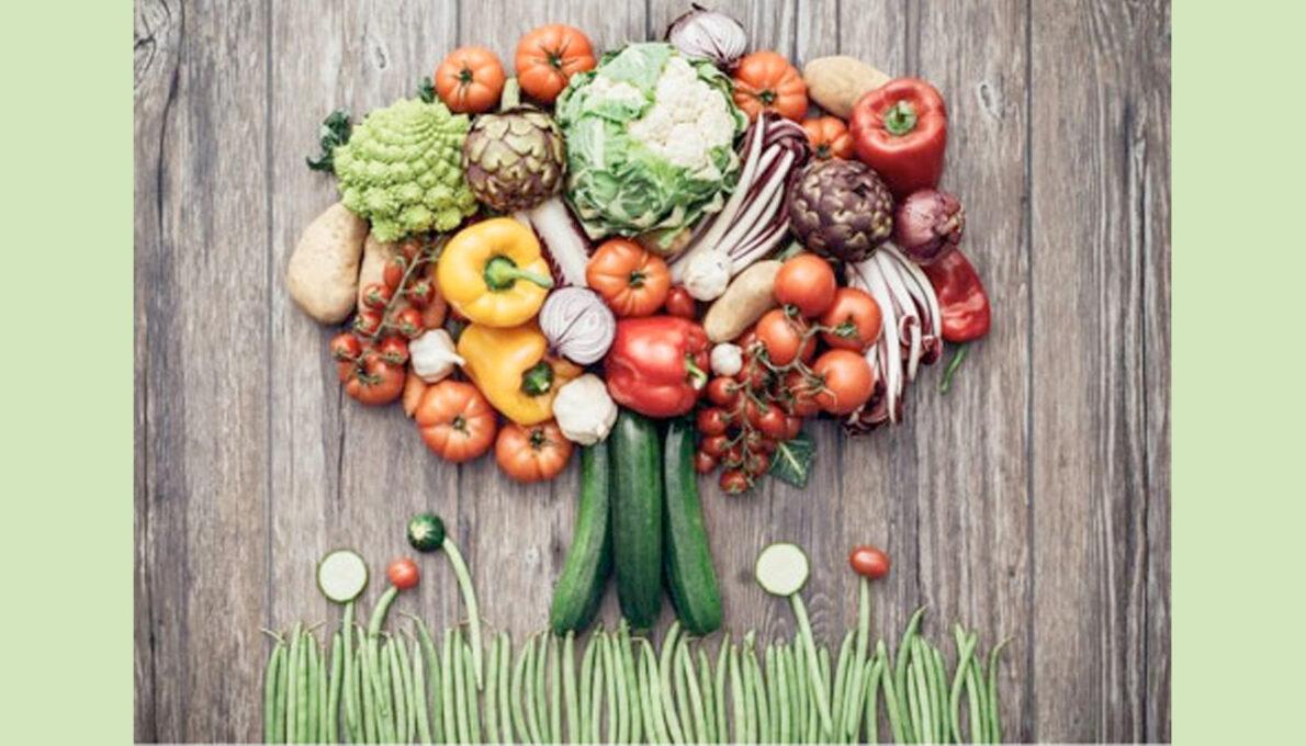 WHOLE FOOD PLANT BASED DIET(WFPB)