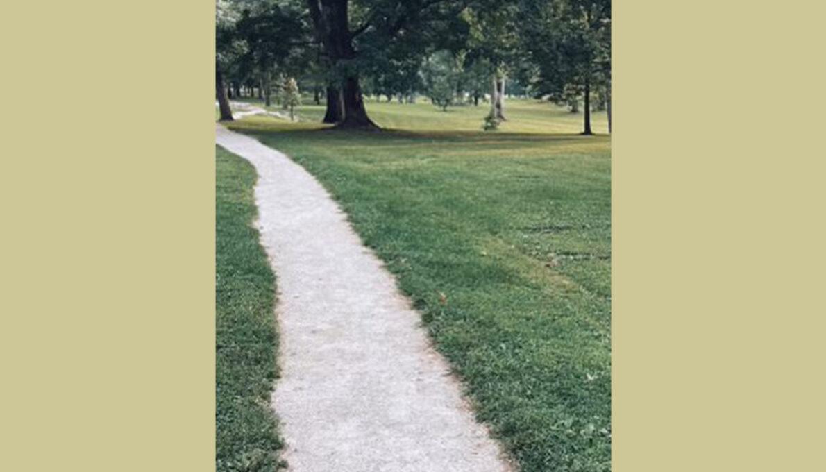I Take a Walk